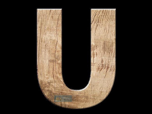 Immagine della Lettera U